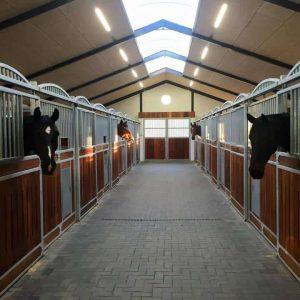 Hestebokse på Askelund